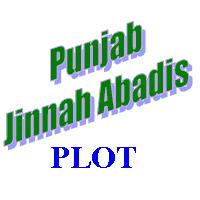 Distribution of 5 Marla Jinnah Abadis Plots on May 28, 2011 (Yaum-e-Takbir) in All Over Punjab