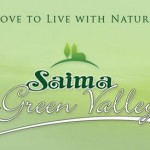 Saima Green Valley Karachi 2
