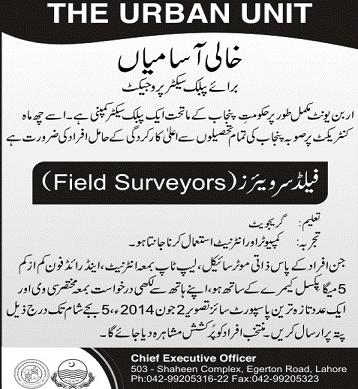 Field Surveyor Job in Urban Unit Punjab